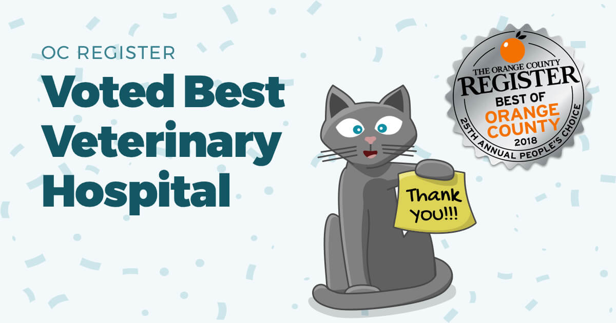 "Featured image for ""T.H.E. Cat Hospital is voted Best Veterinary Hospital in O.C. Register's 25th Annual Best Of Orange County Awards"""
